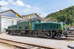 Crocodile, Railroad Pictures, Swiss Railways, Train Art, Electric Train, Oil Rig, Electric Locomotive, Model Trains, Travel Posters