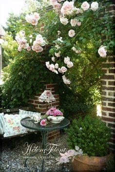 ! A rose affair - Photo © Hélène Flont‿ ◕✿: Un jardinier jadis planta avec amour un beau rosier......