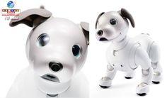 Depois de 12 anos a Sony retorna ao segmento de inteligência artificial e lança o cão Aibo repaginado. Confira o robô no vídeo.