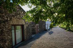 Morgadio da Calçada | enoturismo | Provesende | Douro Valley | Portugal