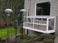 Thinking of building a catio for your cat? Check out these beautiful examples of outdoor cat enclosures designed by Cynthia Chomos of Catio Spaces in Seattle! Diy Cat Enclosure, Outdoor Cat Enclosure, Reptile Enclosure, Pet Enclosures, Cat Window, Backyard Buildings, Cat Run, Cat Care Tips, Pet Tips