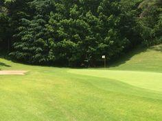 水源地(遠景) 写真中央、17番グリーン旗の左。 木が茂っている奥に位置。