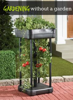 Grow you're own garden on the patio! You can pretty much grow your own salad with this nifty planter. Use the top planter shelf for herbs, flowers, lettuce and other fruits and vegetables, while underneath there's room to accommodate up to four tomato plant vines.
