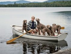 William Wegman out for a row with his dogs.