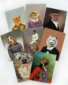 Animal Portrait Postcard Set, Third Drawer Down