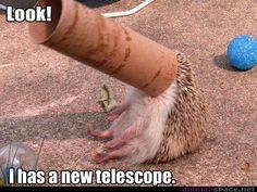 Look! I has a new telescope :)