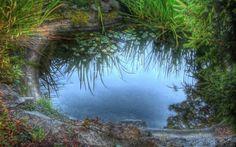 Other: Superb Pond Peaceful Nature Summer HD Desktop for HD 16:9 ...