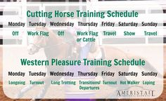 AmeriStall Horse Barns - Planning Your Horse's Training Schedule Horse Training Tips, Training Schedule, Training Programs, Horse Barn Plans, Horse Barns, Horse Behavior, Horse Treats, Horse Ranch, Western Pleasure