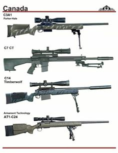 Канада: C3A1, C7 CT, C14 Timberwolf, Armament ...