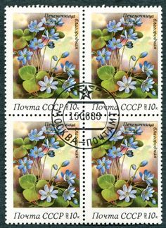 RUSSIA CCCP 1983 10k SG5333 used FG NH Spring Flowers Anemone hepatica a #W38