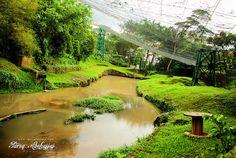Kuala Lumpur | Bird Park