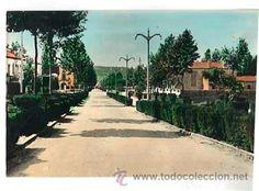 VALENCIA REQUENA AV. LAMO DE ESPINOSA. CIRCULADA - Foto 1