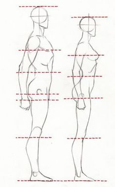Exceptional Drawing The Human Figure Ideas. Staggering Drawing The Human Figure Ideas. Drawing Body Proportions, Human Body Drawing, Body Reference Drawing, Human Figure Drawing, Art Reference Poses, Proportion Art, Learn Drawing, Male Drawing, Human Body Art