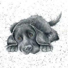 Doggie!