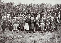 Japanese Sugarcane Farm Workers Hawaii