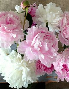 63 Ideas Garden Rose Bouquet Peony For 2019 Flowers Nature, Pretty Flowers, Spring Flowers, White Flowers, Beautiful Flower Arrangements, Floral Arrangements, Garden Rose Bouquet, Pink Peonies, Peony