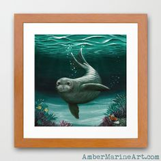Framed Giclée Art Print • Hawaiian Monk Seal acrylic painting by wildlife artist Amber Marine, endangered species series. ••• AmberMarineArt.com © •••