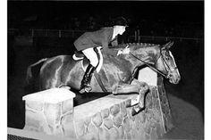 Conrad Homfeld in his 1967 Maclay winning ride
