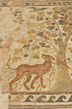 EUROPE, Macedonia, Bitola, Heraclea Lyncestis archaeological site, mosaic detail in the Great Basilica, a dog tethered to a tree. Roman period.