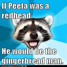 hunger games humor | ... Memes: Lame Pun Coon - And Less Likely to Survive the Hunger Games