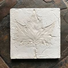 Plaster cast sycamore leaf print, handcrafted wall art, botanical home decor, looks great in the kit Plaster Cast, Plaster Walls, Sycamore Leaf, Collaborative Art Projects, Neutral Tones, Leaf Prints, Cottage Style, It Cast, Wall Art
