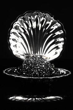 I love caviar. Must learn more. Beautiful silver shell.