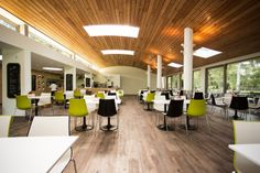 3D green and black cafe chairs. Interior by Mizzi Studios.