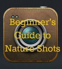 Full of tips & photos to get the best out of taking nature shots