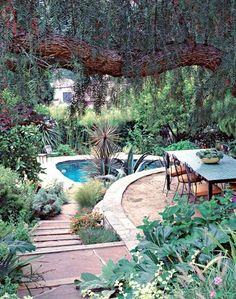 This eclectic Mediterranean planting just exudes the feeling of a warm summer day. Love the terrace overlooking the pool. Designed by Elysian Landscapes in L.A., CA.