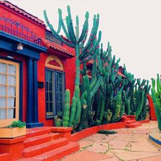 Orange Adobe home dwelling exteriors dwelling with yard cactus plants Desert Homes, Shopping World, Southwest Style, Cacti And Succulents, Cactus Plants, Spanish Style, Outdoor Gardens, Beautiful Places, Around The Worlds