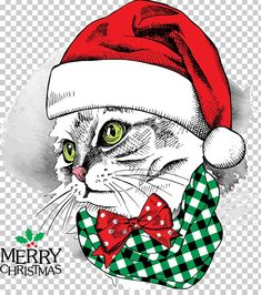 This PNG image was uploaded on February pm by user: and is about Cat Like Mammal, Christmas Card, Christmas Decoration, Christmas Frame, Christmas Lights. Christmas Frames, Christmas Hat, Christmas And New Year, Christmas Cards, Vector Christmas, Welcome Poster, New Years Background, Festivals Around The World, Latest Colour