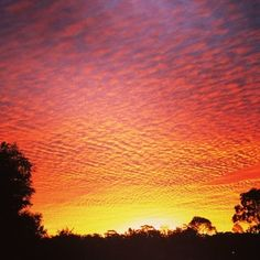 Orange… | Sydney Had A Spectacular Sunset And It Almost Broke The Internet