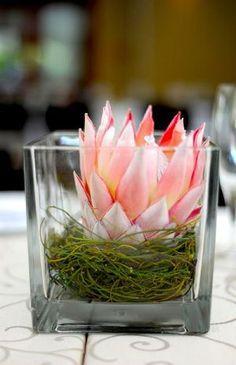 Simple arrangement in a square glass vase with moss Flor Protea, Protea Bouquet, Protea Flower, Protea Centerpiece, Wedding Centerpieces, Wedding Table, Wedding Decorations, Table Decorations, Tropical Flowers