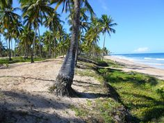 Praia de Saquaíra