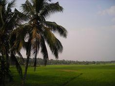 Tropical Kerala Annie Koshy Photography