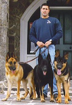 #Houston #Dog @Training - Houston Dog Trainers for off leash training. Justin Bailey, Texas Dog Training Expert. Off Leash K9 are dog training experts who train dogs to be themselves.