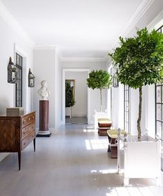 Love the idea of an entrance hallway.