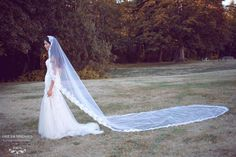 Cathedral Lace Wedding Veil (Style #SS16306) - Dream Dresses by P.M.N  - 1