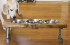 How to Make an Elevated Dog Feeder