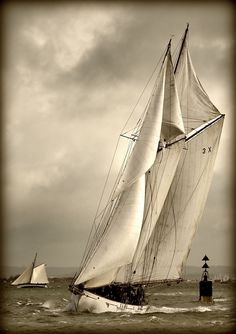 Schooner Photo by: Keith Allso Classic Sailing, Classic Yachts, Beyond The Sea, Yacht Boat, Wooden Boats, Salt And Water, Tall Ships, Sailing Ships, Surfing