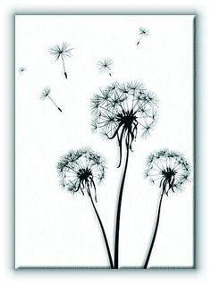 Dmuchawce - Obraz na płótnie Galeria Plakatu