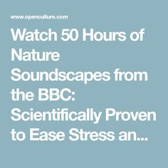 Watch 50 Hours of Nature Soundscapes from the BBC: Scientifically Proven to Ease Stress and Promote Happiness & Awe