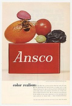 "1961 ANSCOCHROME COLOR FILM vintage magazine advertisement ""color realism"" ~ color realism: (in film) a preoccupation with the reality of color, the recording and reproduction of color with a high degree of naturalism, an unfailing ability . Photography Camera, Image Photography, Vintage Pictures, Cool Pictures, Fashion Still Life, Irving Penn, Vintage Ads, Black And White Photography, All The Colors"