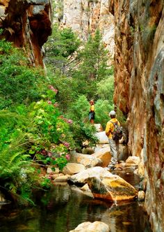 Cedar Falls Trail, The waterfall pool at the top is incredible! All About Africa, Out Of Africa, The Beautiful Country, Beautiful Places, Places To Travel, Places To See, Cedar Falls, African Countries, Places Of Interest