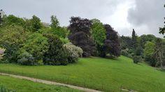 Beplanting, Parc des buttes-chaumont