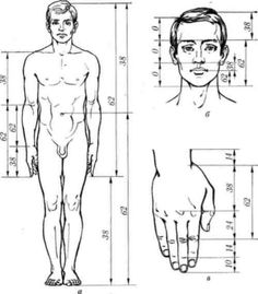 Fig. 27. the Golden Ratio person: a - in a figure, and b - in the head, in the - in the hand