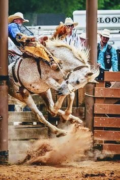 Kicked in the Head: The Equestrian Helmet Rodeo Cowboys, Real Cowboys, Cowboy Horse, Cowboy And Cowgirl, Horse Riding, Rodeo Rider, Bucking Bulls, Rodeo Events, Bull Riders