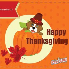 Happy thanksgiving  #thanksgiving #thepawsland #dogs #petboutique #cats #meow #woof #usa