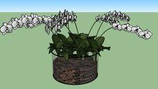 3D Model of Vaso de Orquídeas Brancas