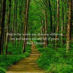 """Only in the woods..."" Knut Hamsun [960x960]"